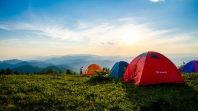 Photo of Top 10 National Parks for Camping